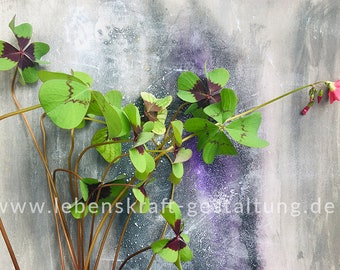 Clover   four-petal   artistically   Photo   Download   Poster   Self-printing   Gift   Decoration