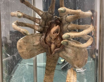 Original Iconic SFX Facehugger Giger Prop Used in the 1979 Alien Movie.