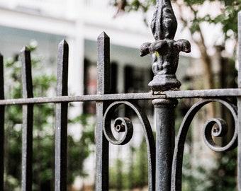 Charleston, South Carolina Photography - Wrought in Iron - Architecture Fine Art Photograph, ironwork, Home Decor, Large Wall Art, Fence