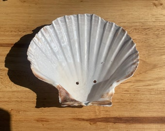 Beach Decor Stone Soap Tray Shell Soap Dish Bathroom Seashell Soap Saver Resin Soap Dish Resin Kitchen Soap Deck