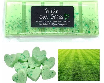 Spring Summer Clean Scent FRESH CUT GRASS Soy Wax Melts Scented Wax Tarts 1 Package