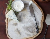 Petrified Wood Platter 8 to 10 Inches, Each Platter Has a Unique Size, Color and Imperfections