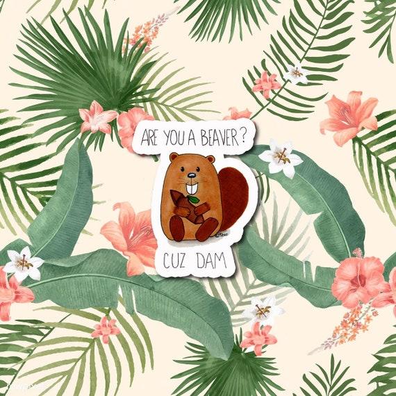 "Are you a Beaver? Cuz Dam  | Die-Cut Window, Water bottle, Skateboard, Car, Wall Decal, Laptop Vinyl Sticker - 3"""