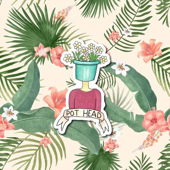 Pot Head | Die-Cut Window, Water bottle, Skateboard, Car, Wall Decal, Laptop Vinyl Sticker - 3""