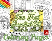 Tea Tree Essential Oil Coloring Pages - 23 Gorgeous Pages - Coloring Pages with PDFs