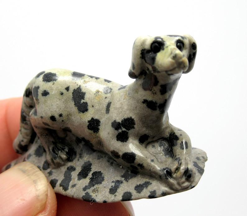 120.0ct Exquisite Natural Mexican Dalmatian Jasper Dog Carving