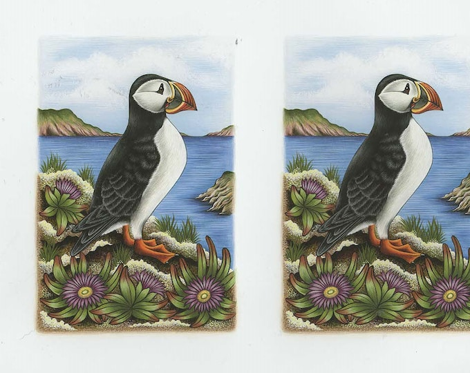 puffin bird 2 on sheet decoupage sheet high quality printed on quality paper ideal cards etc
