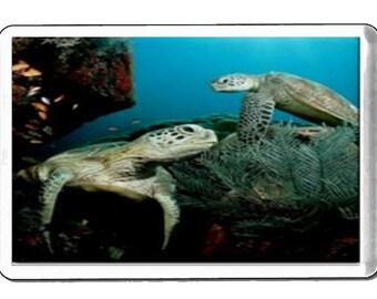 turtles fridge magnet  handmade in uk from uk made parts, fridge magnet