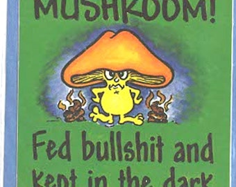 i feel like a mushroom slapstick funny stickers pack of 1 (as shown) self adhesive fun stickers