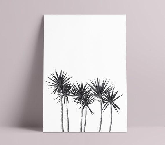 Black & White Palm Tree Art Print  [Unframed, A4 / A3 / A2 / A1 + more Poster]