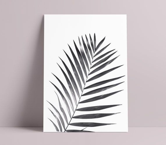 Black & White Large Leaf Art Print  [Unframed, A4 / A3 / A2 / A1 + more Poster]