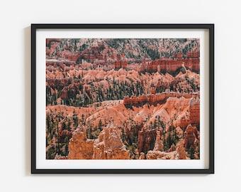 21. Bryce Canyon US National Park   Hoodoos   Rim Trail   Canyon Hiking trail   Utah outdoors nature