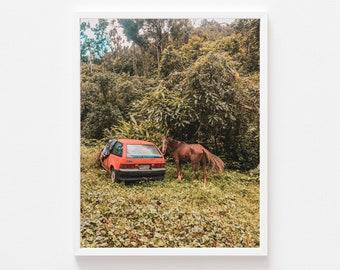 Abandoned Car, Bayamon, Puerto Rico, San Juan, Wall art, Caribbean Wall Decor, Teal and Orange, tropical art, bohemian style vibes