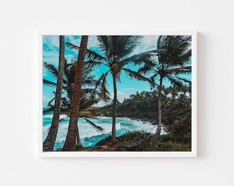 Palm tree beach, cerro gored, san juan, Puerto Rico, Wall art, print, Caribbean, landscape, Decor,