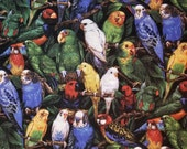 Multicolored Parrots - 100% Cotton Fabric - Select Your Size or By The Yard