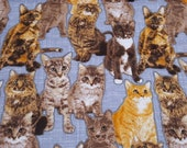 """Flannel Fabric - Cats on Gray - 19"""" REMNANT - 100% Cotton Flannel"""