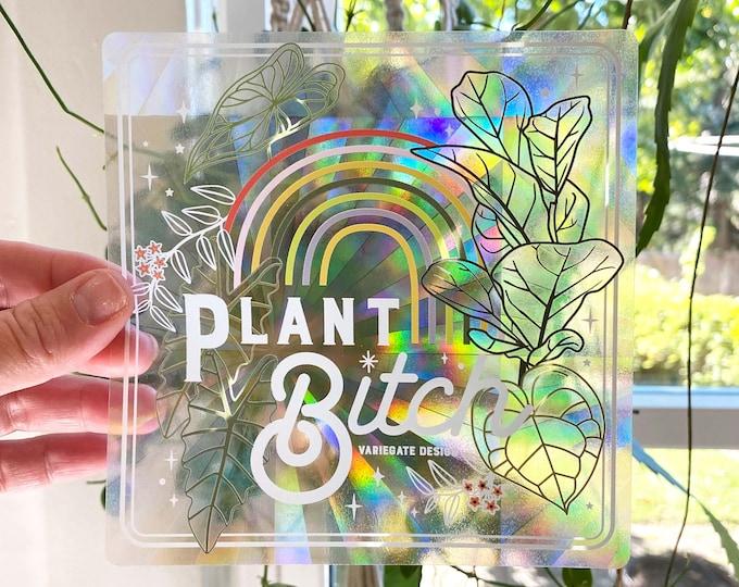 STICKER   Plant Bitch   Rainbow Making Suncatcher Window Decal