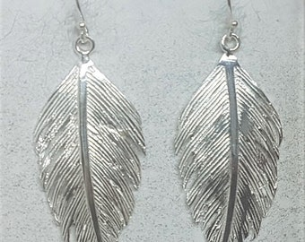 Sterling Silver Brushed Feather Earrings