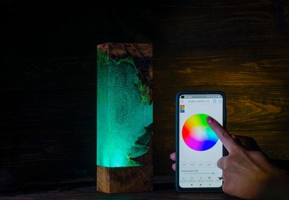 Night Light - Epoxy Resin Wood Lamp - Unique Decor -  Unique Gift - Home Decor - Lighting - Christmas - Birthday - Wedding - New Year's