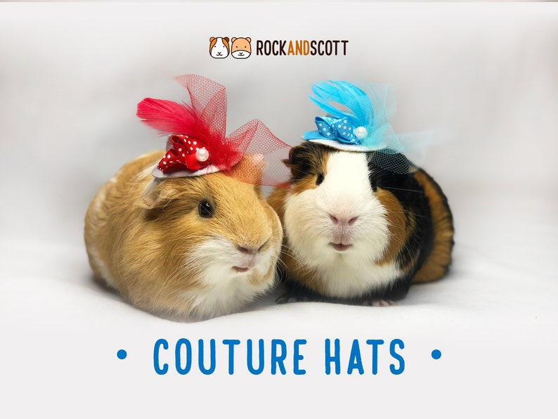 Guinea Pig Couture Hats   Hats for bunny rabbits hamsters image 0