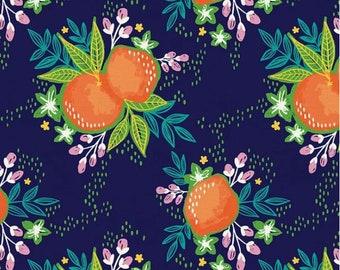 Citrus House by Erin Borja 2 Piece Fat QuarterQuarter Yard Bundle Paintbrush Studio Fabrics