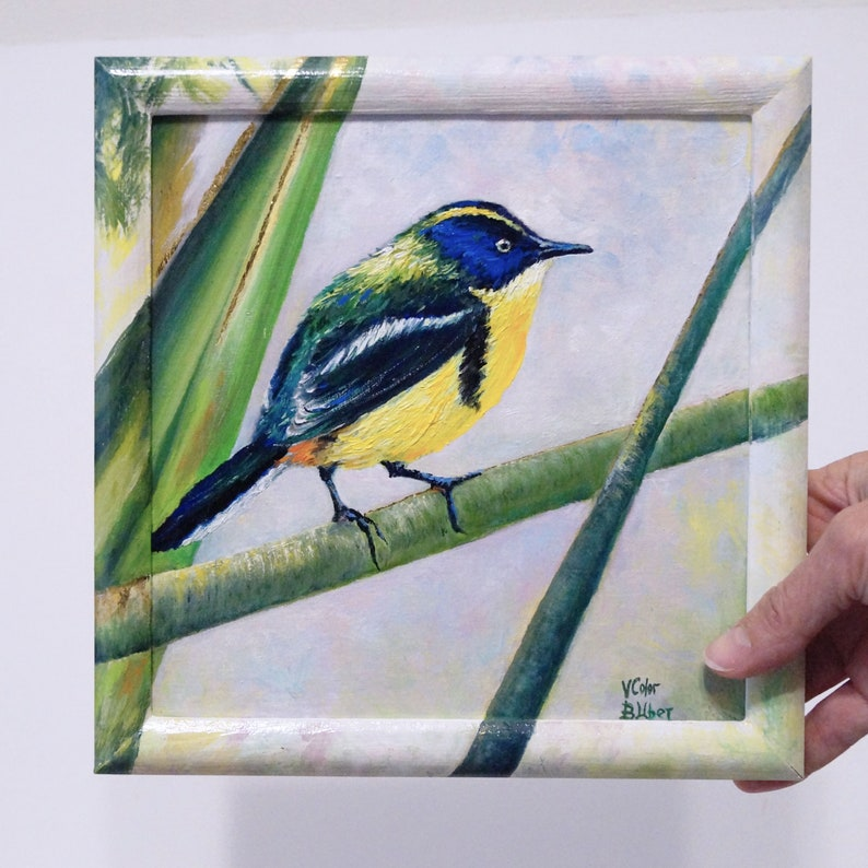 Original bird Painting 8x8 Colorful wall decor square oil painting Multi colored bird rush tyrant Wild bird on a branch,Ornithology gift
