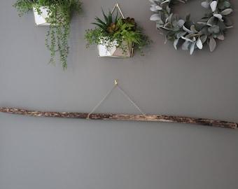 west coast beach wood decor Driftwood for macrame art garden or terrarium projects