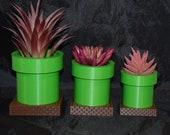 Super Mario Warp Pipe Tube inspired Flower Succulent Pot Planter Air Plant Figure 3D Printed USA