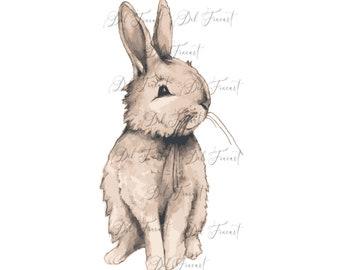 Rabbit Sublimation Download /Rabbit PNG /Instant Download / Rabbit Clipart /Rabbit Sublimation designs, Rabbits, Download Printable