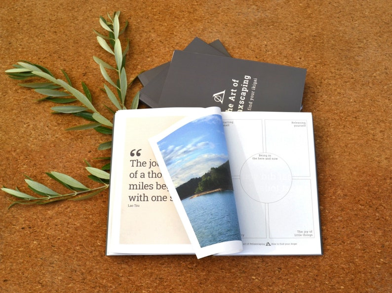 Daily Mindfulness Gratitude Journal  How to find your ikigai image 0