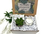 Our thoughts and prayers are with you Succulent gift box Grief Gift Sorry for your Loss Care Package Sympathy Gift Encouragement gift box