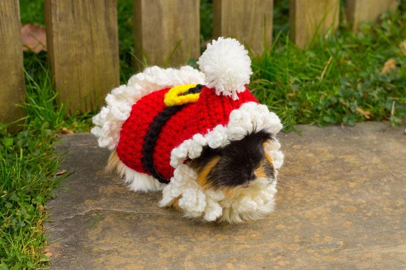 Guinea Pig Santa Sweater Costume Crochet Small Animal image 0