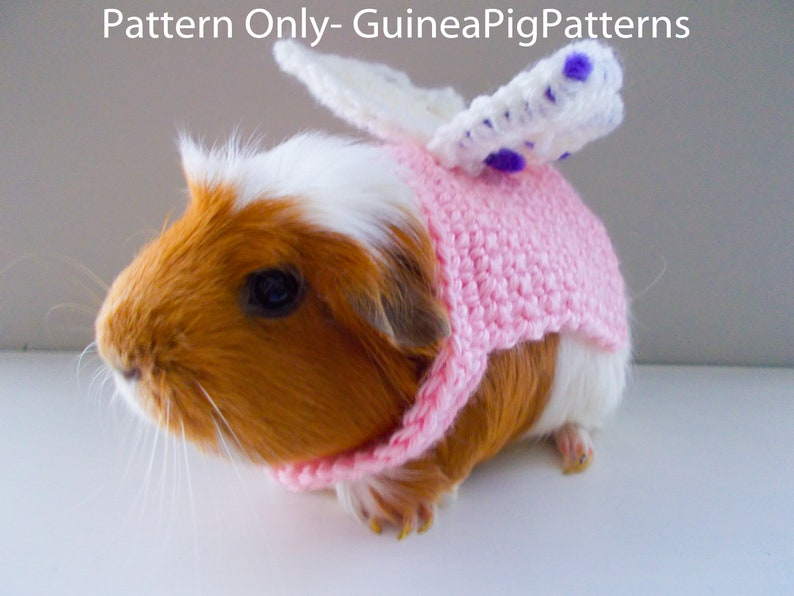 Guinea Pig Crochet Fairy Costume Pattern Digital Download and image 0
