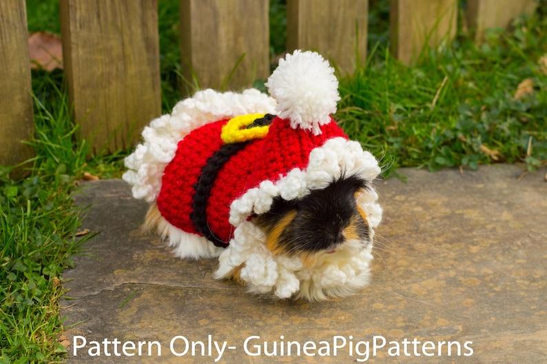 Guinea Pig Santa Crochet Sweater Pattern Costume Cosplay image 0