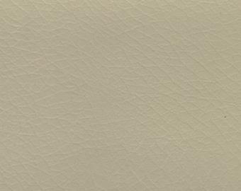 BTY Vintage Pale Green Auto Vinyl w/ Tortoise Grain