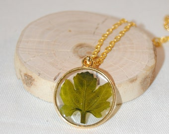 White Mother of Pearl Large Hand Carved Leaf Pendant with drilled hole 40x45 mm One Piece C8340