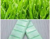 Fresh Cut Grass Scent, Highly Scented, Soy Wax Melts, Snapbar, Clamshell, Deli Pot