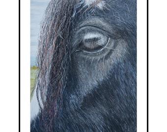 Equine fine art, horse print, A4 fine art print, dark horse art, soft pastel art, wall hanging, gift idea, birthday gift, home decor art