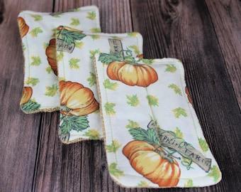 Reusable sponge, reclaimed washable unsponge, zero waste pumpkin farm fall autumn thanksgiving