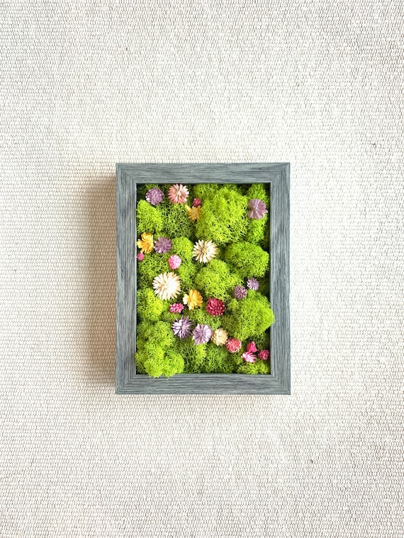 Moss Wall | Plant wall decor | Dried flowers | Preserved moss art | Plant wall art | Moss wall art | Framed wall decor | Green and Fuchsia