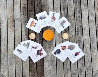 Playdough Woodland Activity Set - Autumn Gift Bundle - Flashcards - Stampers