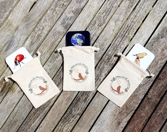 Minibeast, Space, Birds Flashcards Bundle - Nature Cards - Fact Cards - Learning Cards PLASTIC-FREE