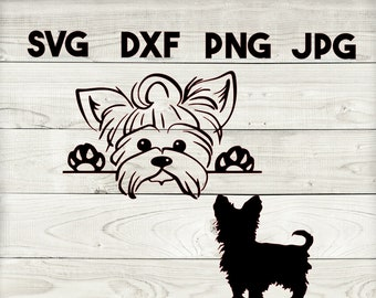 jpeg and png Yorkie design svg perfect for car decals or mugs