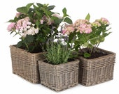 Square Wicker Planters Baskets For Indoor Or Outdoor Use