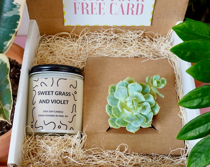 Succulent & Candle Gift Box, Great Mother's Day Gift, a Soy Candle with a Succulent