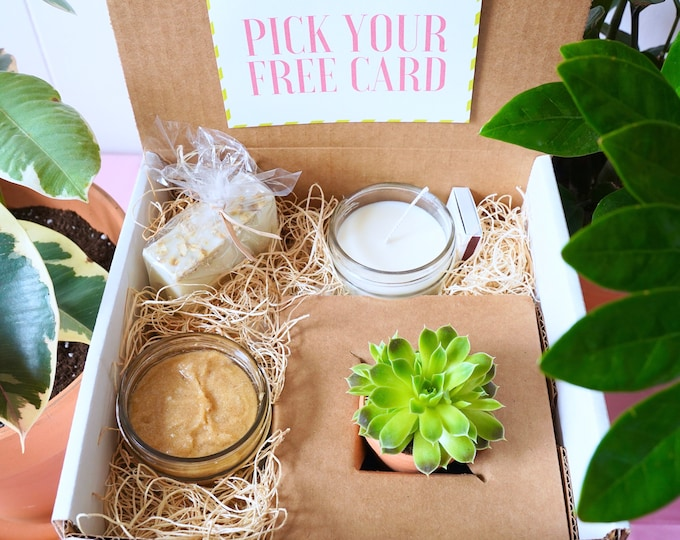Sweet Little Succulent Gift Box, Homemade Goat Milk Soap, Soy Candle, Brown Sugar Scrub, with a Succulent
