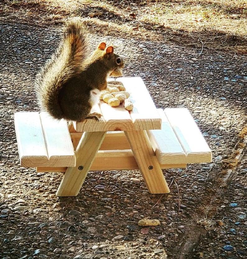Squirrel Picnic Table Feeder image 0