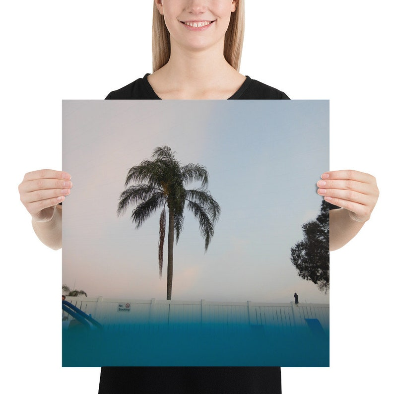 Pool Side Palm Tree Photography by Joslyn Crowl Photo paper poster