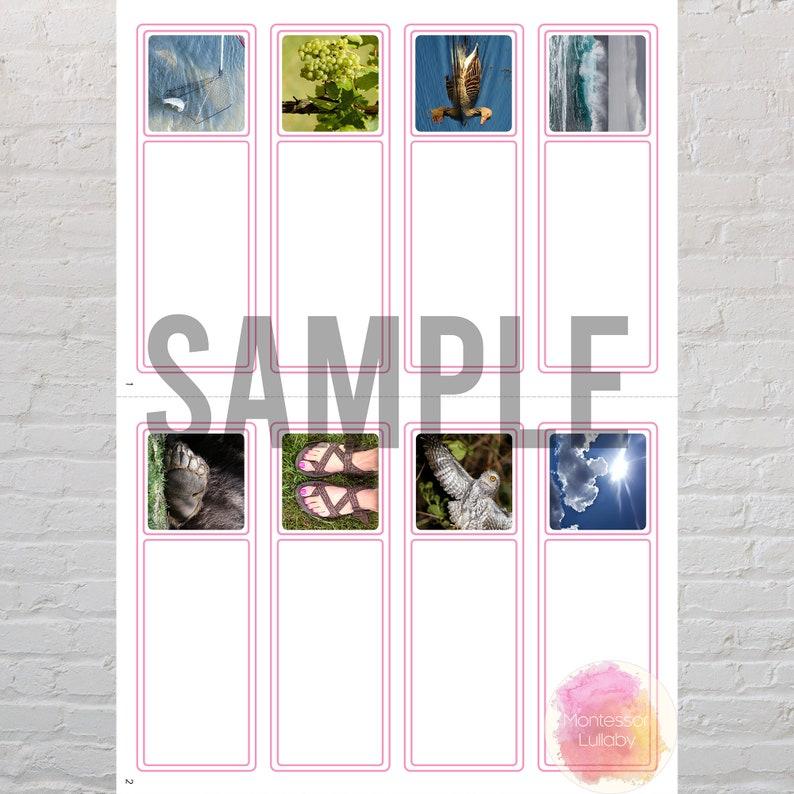 Spanish Pink Series Print Lesson plan SERIE ROSA MONTESSORI Sentences Matching Cards Digital Download Phrases
