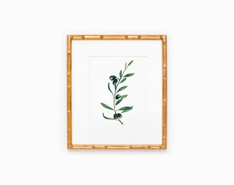 Olive Branch Watercolor Painting   Olive Branch   Botanical Watercolor Painting  Greenery   Olive Branch Wall Decor